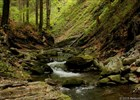 Přírodní památka Vodopády Satiny  (klikni pro zvětšení)
