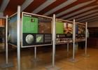 Vestibul kina - výstavní prostor  (klikni pro zvětšení)