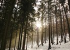 TURISTICKÁ TRASA KUNČICE P.O. - KNĚHYNĚ - PUSTEVNY  (klikni pro zvětšení)