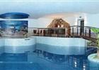 Bazén hotelu Troyer  (klikni pro zvětšení)