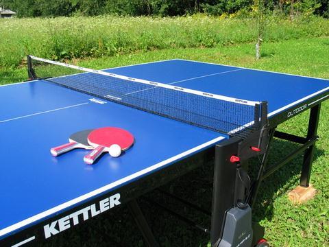Profesionální stoní tenis