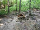 Mločí studánka v lese nad křížem  (klikni pro zvětšení)