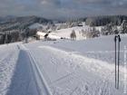 Zima - běžecká stopa, Gruň  (klikni pro zvětšení)