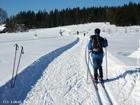 STARÉ HAMRY - Zima - běžecká stopa  (klikni pro zvětšení)