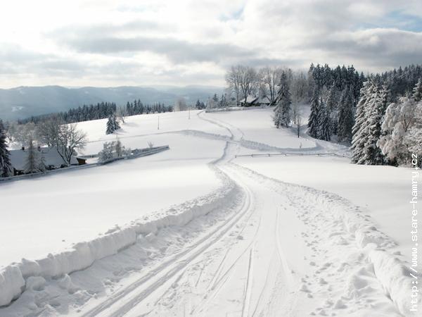 STARÉ HAMRY - Zima - běžecká stopa