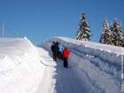 Zima Gruň  (klikni pro zvětšení)