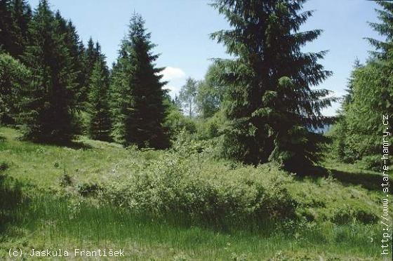 Přírodní památka Podgruň
