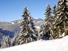 Výhled ze sjezdovky Radegast na Lysou horu  (klikni pro zvětšení)