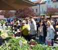 Letošní sezóna farmářských trhů ve Vsetíně přilákala rekordní počet návštěvníků