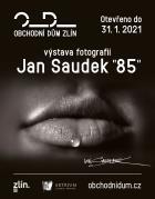 """Jan Saudek """"85"""""""